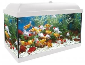 Aqua-led Pro 45 Blanco