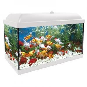 Aqua-led Pro 300 Blanco