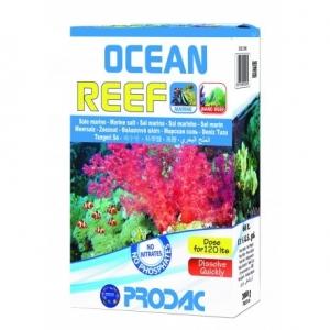 Ocean Reef 4kg