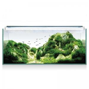 Aquascape Rgb 100