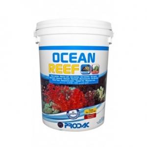 Ocean Reef 8kg