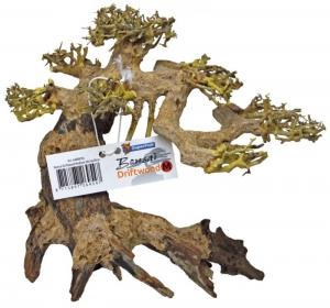 Bonsái Driftwood