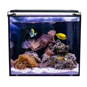 Aqua Ocean Hydra 164 L. Marino