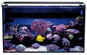 Aqua Ocean Hydra 112 L. Marino