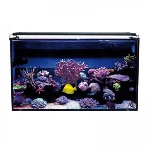 Aqua Ocean Hydra 240 L. Marino
