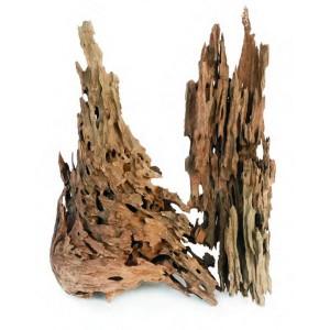 Dragón Wood
