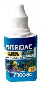 Nitridac 30ml