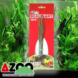 Planta Seda Blyxa Japonica L